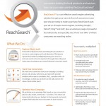 Search Engine Advertising | ReachSearch